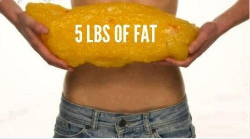 lose 5 lbs of fat