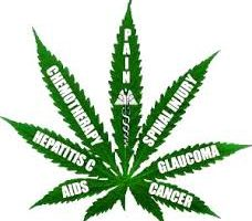 Medical marijuana news the shocking developments