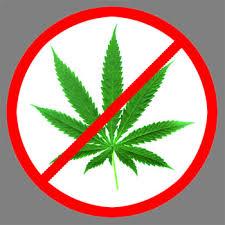 Nova Scotia & Royal bank cut off marijuana businesses