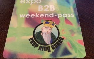 Hempfest Cannabis expo Hamilton 2019 review